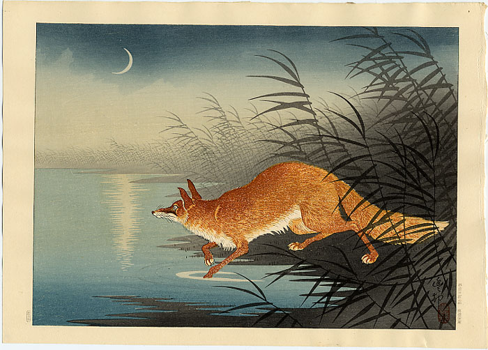 fox-in-the-reeds