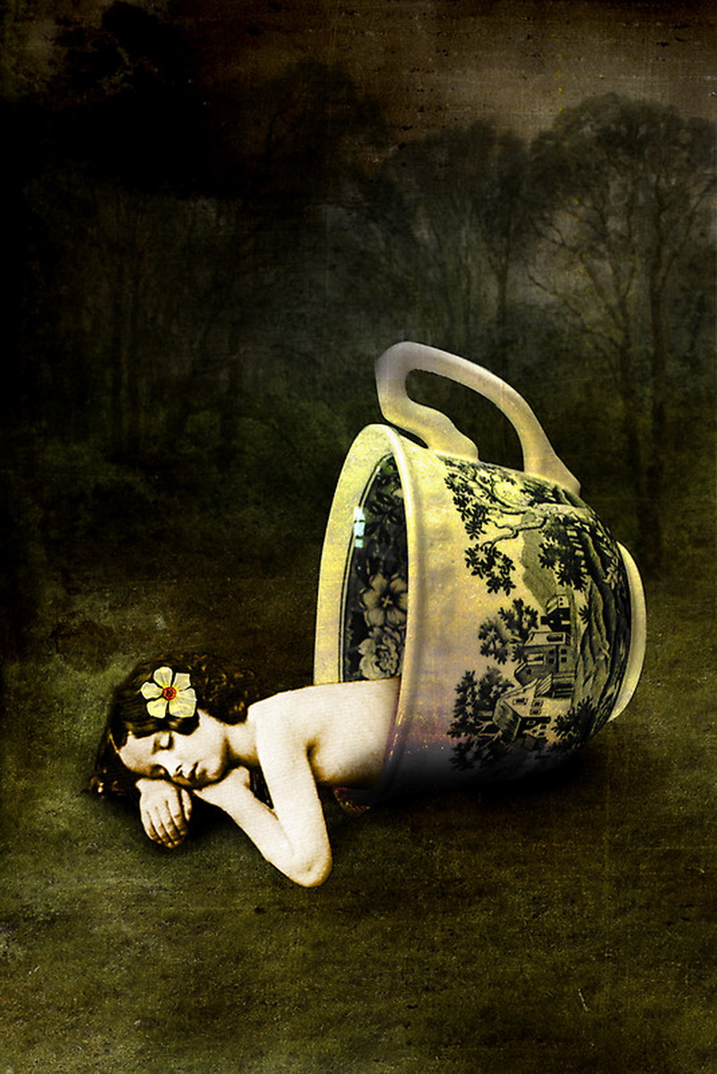 The-Teacup-by-Catrin-Welz-Stein