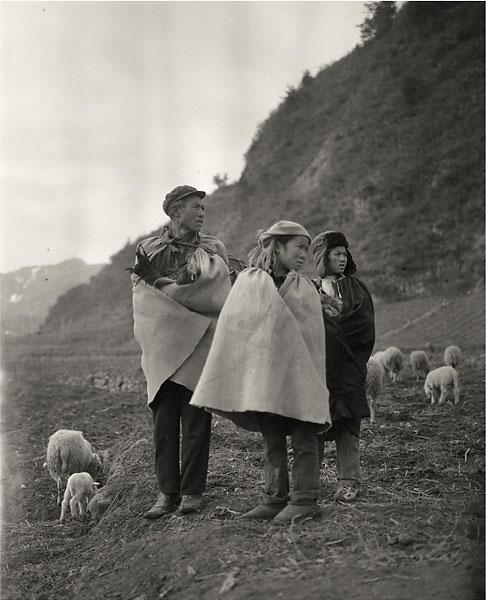 familia. quien sostenga un pollo