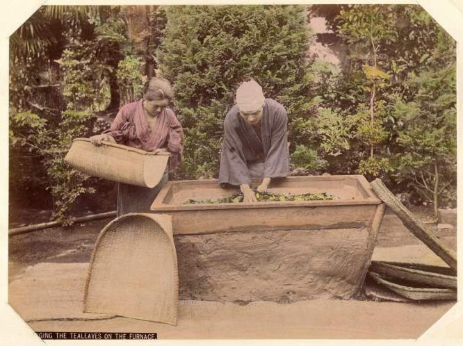 Kusakabe_Kimbei_-_395_Wringing_the_Tealeaves_on_the_Furnace